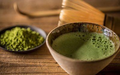 Hvad er Matcha te og hvordan smager det?