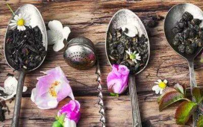 Historien om hvor te kommer fra