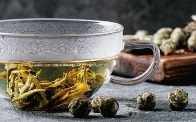 Sencha te komplet guide – Hvordan dyrkes, fremstilles og brygges det?